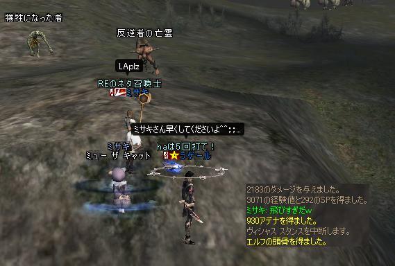 ネコクエ3.JPG