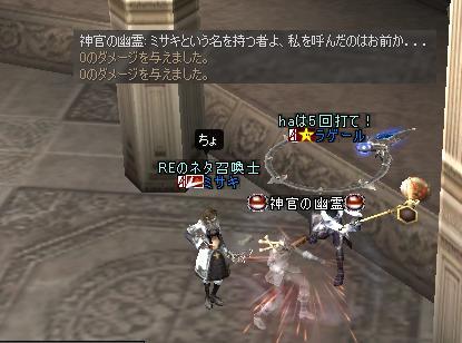 ネコクエ5.JPG